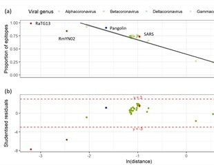Prior T cell immunity to SARS-CoV-2 unlikely to be the result of seasonal coronavirus infection