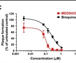 MEDS433 hinders SARS-CoV-2 replication
