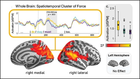 Processing facts elicits stronger brain activity than uncertain information
