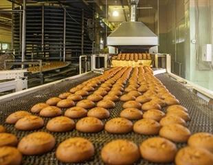 Raman Spectroscopy: Improving the Food Production Process