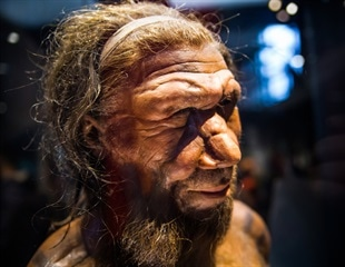 Neanderthal gene variant increases risk of severe COVID-19
