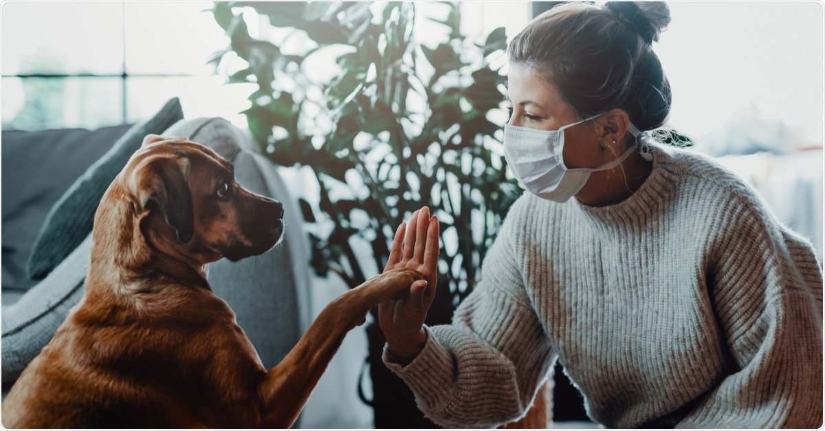 Study: Natural SARS-CoV-2 infections, including virus isolation, among serially tested cats and dogs in households with confirmed human COVID-19 cases in Texas, USA. Image Credit: MT-R / Shutterstock