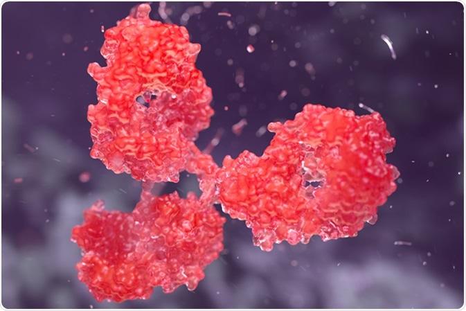 Human antibody molecule illustration. Credit: YuriiHrb / Shutterstock