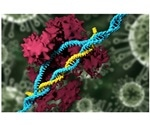 Gene-editing is more error-prone than thought, new findings suggest