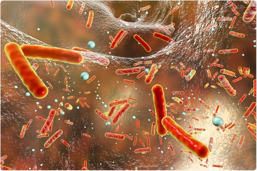 Antibiotic resistant bacteria in the body
