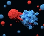 Immune cells count each other in order to decide whether to attack