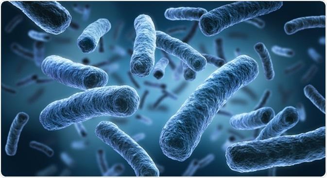 Legionella pneumophila - medical 3d illustration. Image Credit: peterschreiber.media / Shutterstock