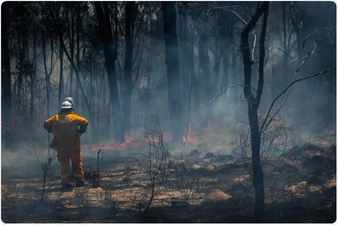 Rural Firefighter observes bushfire in Glen Innes. Image Credit: Stu Shaw / Shutterstock