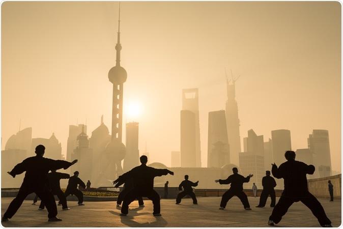 Tai Chi. Image Credit: Oscar Tarneberg / Shutterstock