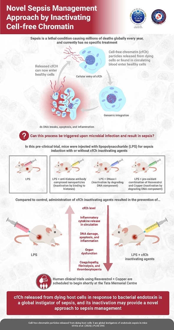 Los científicos destapan el mecanismo molecular dominante que es la base de diversos aspectos de la sepsia