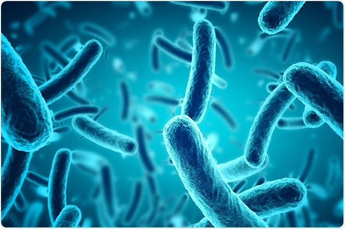 What is the Skin Microbiome?
