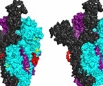 Scientists find important clues to vaccine in SARS-CoV-2 genome