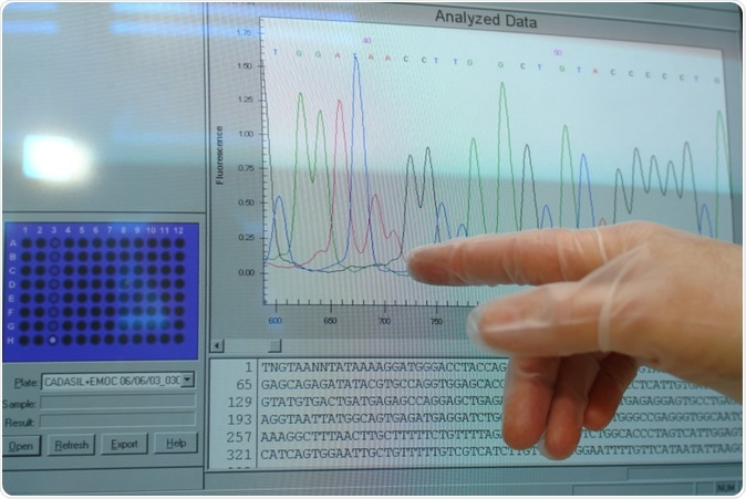 Computer monitor shows DNA sequencing. D-VISIONS / Shutterstock