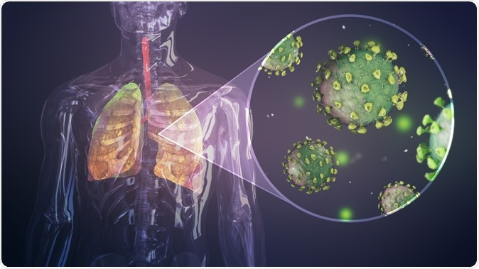 Illustration of coronavirus infecting respiratory system. Image Credit: Iokanan VFX Studios / Shutterstock
