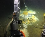 Microbiologists discover ethane-munching microbes in hot vents