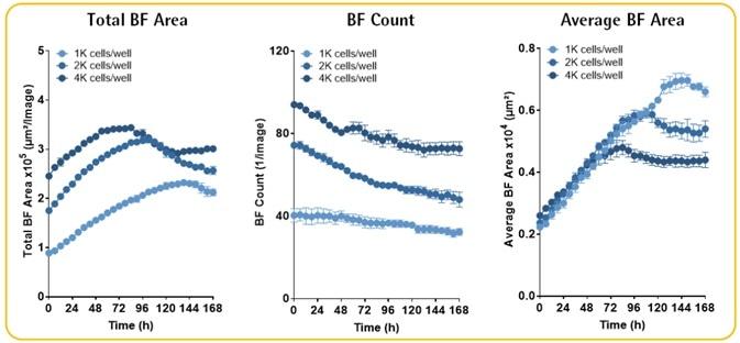 Multi-Spheroid 3D Tumor Assays Development for Live-Cell Analysis