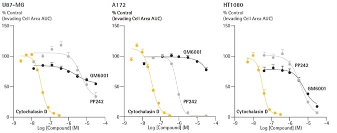Distinguish pharmacological profiles of anti-metastatic compounds through concentration response curve generation. U87-MG, A172 and HT1080 cells were seeded in ULA round bottom 96-well plates (2,500 cells/well; U87-MG, HT1080 and 5,000 cells/well; A172) and allowed to form spheroids (3 d) prior to treatment. Spheroids were subsequently embedded in 2.25 mg/mL Matrigel and spheroid invasion was monitored for 10 d. Representative concentration response curves (CRCs) of the area under the curve (AUC) analysis of the invading cell area (μm2) (0 – 7 d). Data were collected over a 240 h period at 6 h intervals. Each data point represents mean ± SEM,