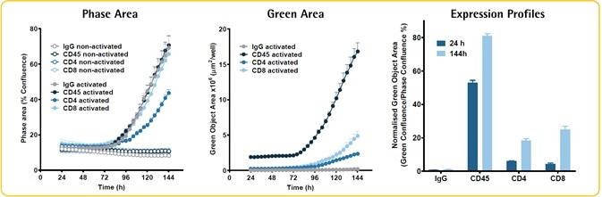 Live-cell immunocytochemistry: PBMC immuno-phenotyping