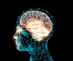 Memory cells that help to interpret new situations discovered