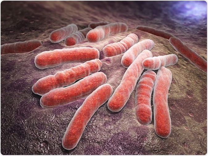 Study: Coronavirus activates a stem cell-mediated defense mechanism that accelerates activation of dormant tuberculosis: implications for the COVID-19 pandemic. Image Credit: Tatiana Shepeleva / Shutterstock