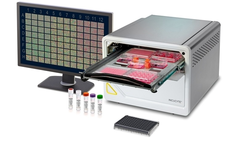 Sartorius launches the new Incucyte SX5® for live-cell analysis, offering new possibilities for live-cell analysis experiments.