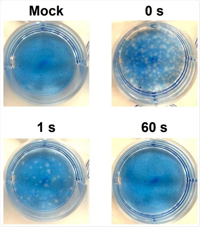 Plaque formation in Vero cells. Virus solutions irradiated with DUV-LED for several durations 124 were diluted (100-fold) and inoculated to Vero cells. A representative result is shown.