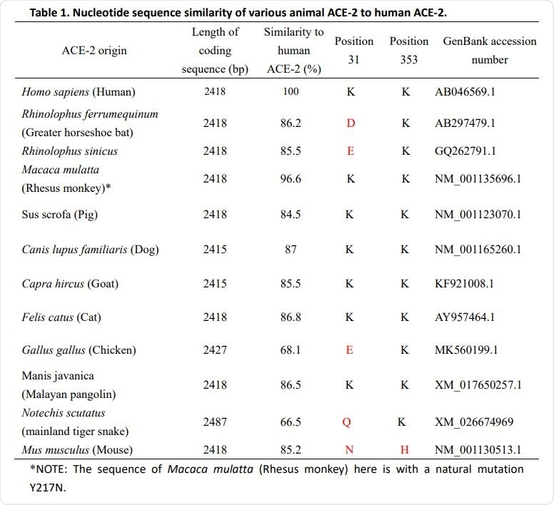 Similarità di sequenza di nucleotide di vario animale ACE-2 a ACE-2 umano.
