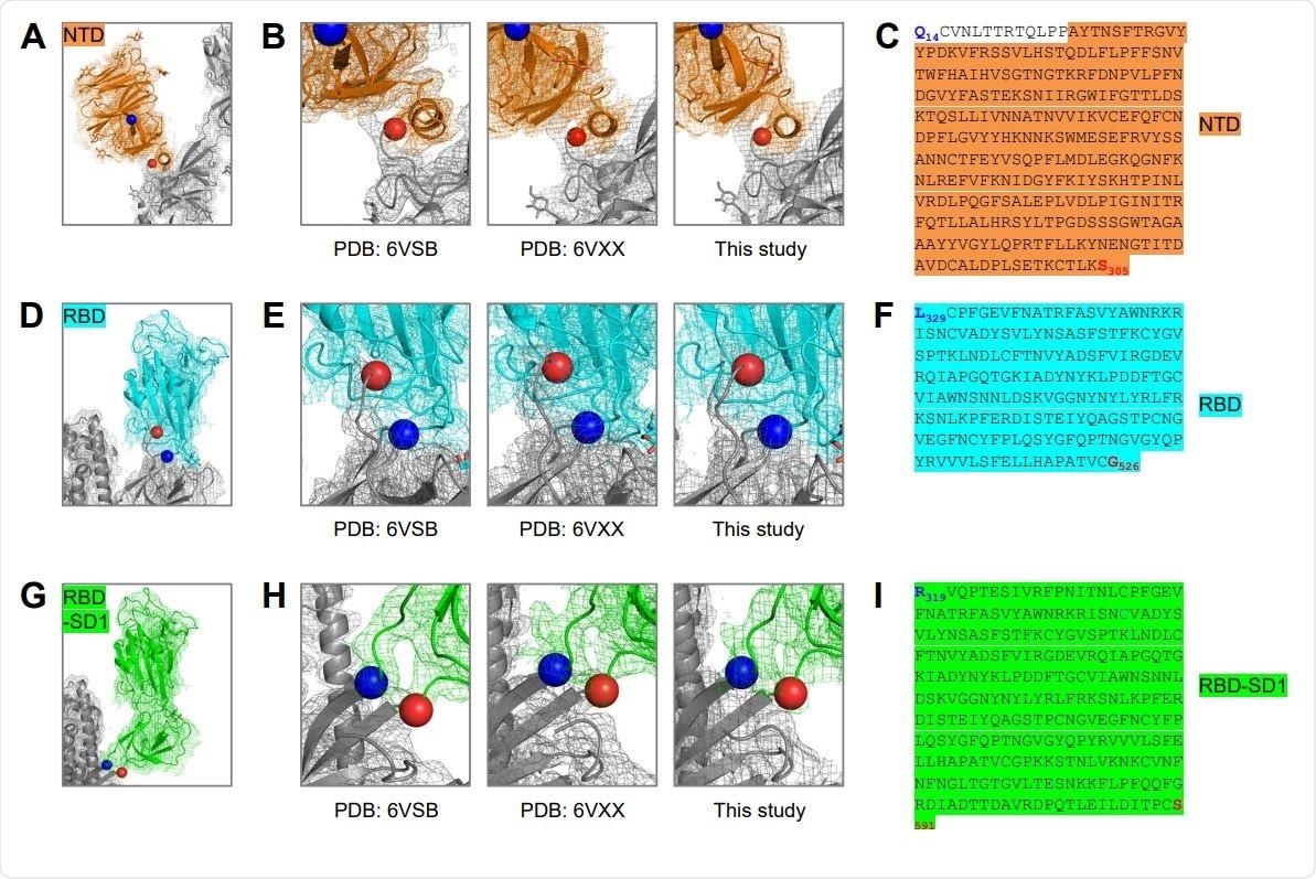 Définition Basée sur structure des sondes moléculaires SARS-CoV-2 comportant NTD, RBD et RBDSD1 la structure de Cryo-FIN DE SUPPORT des domaines (a) du domaine de NTD dans la sonde de S2P déterminée dans cette étude (figure 3E), avec la densité de reconstruction montrée dans l