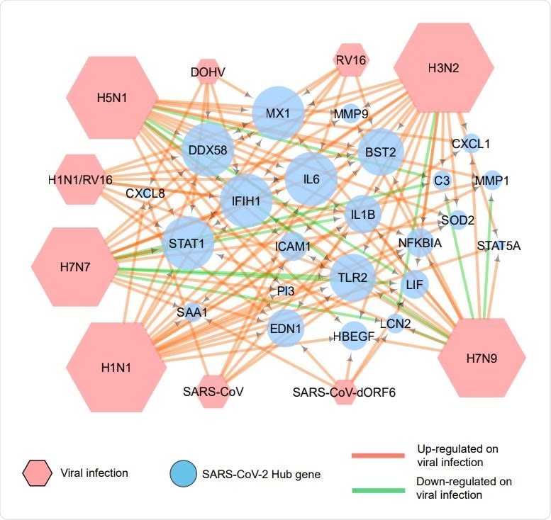 Association of COVID 19 hub genes with other respiratory viral infections. A network generated by use of Cytoscape depicts the expression of COVID-19 hub genes on infection by various respiratory viruses. The green arrows indicate down-regulation, and the red arrows show up-regulation of these genes.