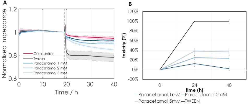 (A) Increasing concentrations of paracetamol induce a decrease in base impedance of MH cells which can be monitored continuously. Tween (2%) induced 100% cell death and was used as a positive control. (B) Toxicity measurement of MH cells using an LDH release assay. Paracetamol showed a dose-dependent effect on toxicity in both assays.