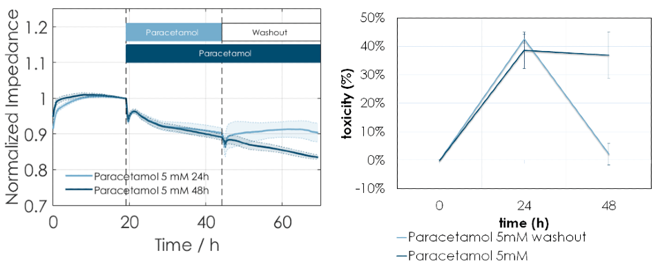 (A) Normalized impedance versus time (in hours) after MH cells were exposed to 5 mM paracetamol for 24 or 48 hours. Cells recovered, indicated by the increase in base impedance, when paracetamol was washed out after 24 hours but toxicity continued when 5 mM paracetamol was added again for a further 24 hours. (B) Toxicity measurement using LDH release assay also shows that toxicity is reversed upon washout of paracetamol but continues with a 2nd dose of paracetamol after 24 hours.