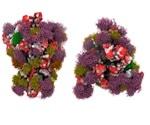 SARS-CoV-2 S Protein Glycosylation