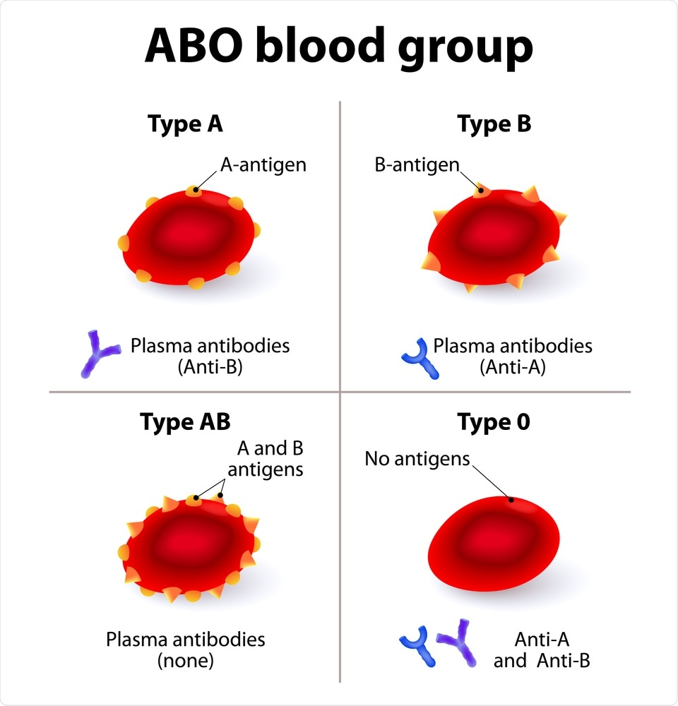 Study: The ABO blood group locus and a chromosome 3 gene cluster associate with SARS-CoV-2 respiratory failure in an Italian-Spanish genome-wide association analysis. Image Credit: Designua