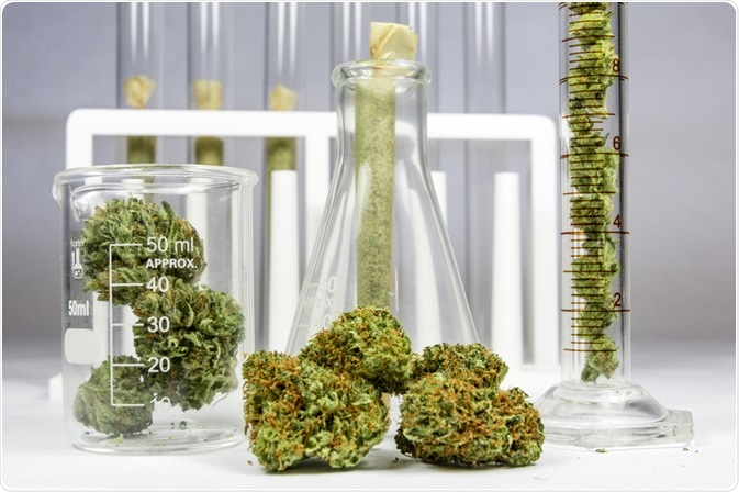 cannabis synthesis