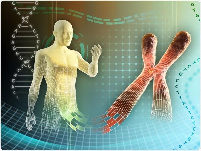 Human Genome Concept