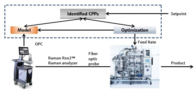 Real-time Glucose Control in Cell Culture Bioprocesses using Raman Technology