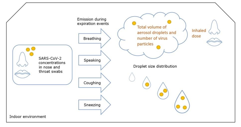 Overview of the processes modelled in this study.