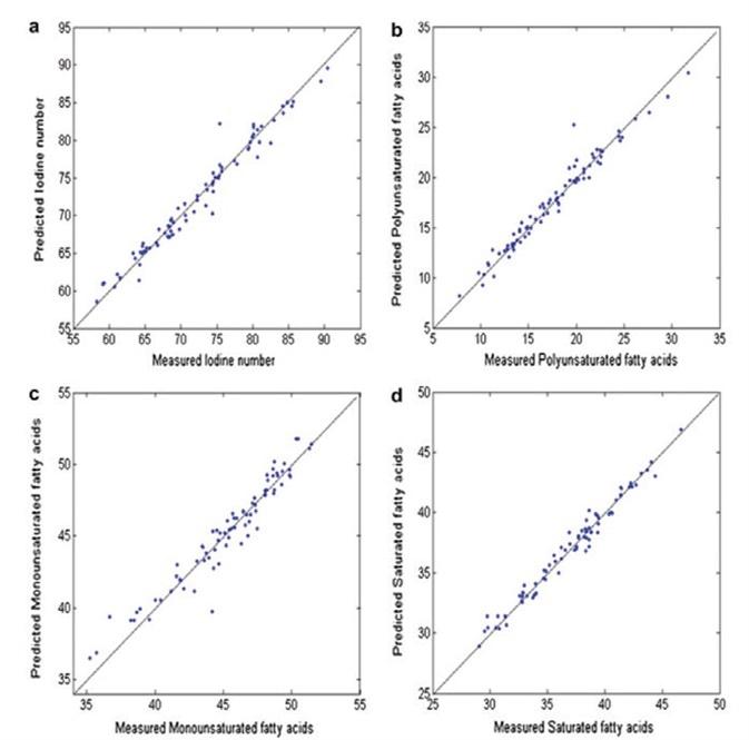Predicted versus measured values of (a) iodine value, (b) polyunsaturated fatty acid content, (c) monounsaturated fatty acid content, and (d) saturated fatty acid content in adipose tissue.