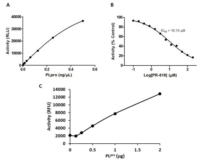 Activity profiles of PLpro (SignalChem Catalog No. C19PL-G241H). A. Deubiquitinase activity of PLpro detected in a bioluminescence assay. B. PLpro inhibition profile of PR-619, a broad-spectrum DUB inhibitor. C. Protease activity of PLpro detected in a FRET-based assay.
