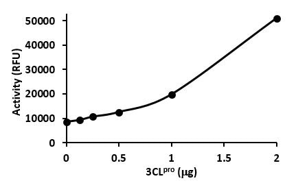Protease enzyme activity of 3CLpro (SignalChem Catalog No. C19CL-G241H), as detected in a FRET-based assay.