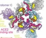 SARS-CoV-2 spike pocket is a putative target for antiviral design