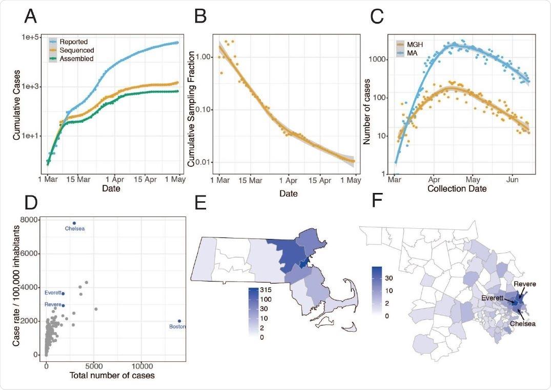 Epidemiologia de SARS-CoV-2 em Massachusetts e de genomas virais arranjados em seqüência. A. Os casos confirmados e presumidos cumulativos relatados por todo o estado no miliampère (7) do 1º de março ao 1º de maio de 2020, e o número destas caixas que foram processadas (laranja) e com sucesso renderam genomas completos com cobertura de/>98% (verde) neste estudo. B.A proporção cumulativa de todo o miliampère confirmou casos positivos com seqüências completas do genoma dos indivíduos originais que são parte deste conjunto de dados ao longo do tempo. C. Casos do 1º de março ao 15 de junho diariamente relatados através do miliampère por todo o estado (azul) e em MGH (alaranjado). D. Número total de casos comparados aos casos por 100.000 povos para cidades através do miliampère. As cidades no azul são representadas altamente no conjunto de dados do genoma. E. Distribuição de casos do miliampère com genomas virais arranjados em seqüência pelo condado. F. Como em E mas em mostrar condados somente de Middlesex e de Suffolk, os dois condados com o número o mais alto de amostras arranjadas em seqüência, pelo código postal. Os casos associados com os ambientes vivos reunidos foram excluídos dos mapas em E e em F.
