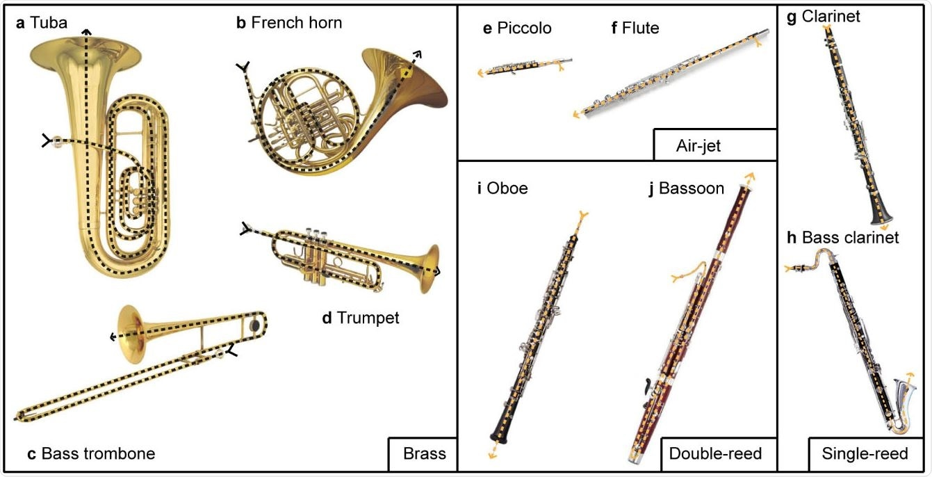 Images of 10 instruments used for the aerosol measurements. Brass instruments include (a) tuba, (b) French horn, (c) bass trombone, and (d) trumpet. Air-jet woodwinds include (e) piccolo and (f) flute. Single-reed woodwinds include (g) clarinet and (h) bass clarinet. Doublereed woodwinds include (i) oboe and (j) bassoon. The dashed line marks the main flow path in each instrument.