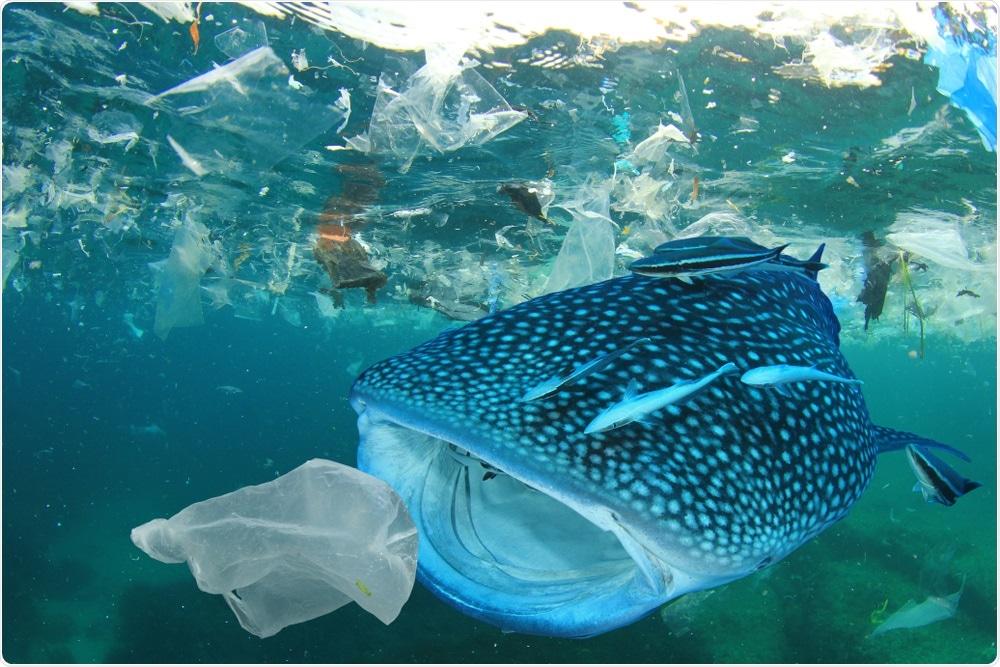 Poluição plástica no mar