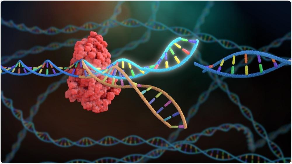 CRISPR/Gene Editing