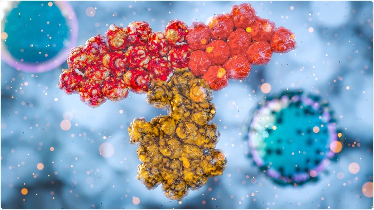 Antibody SARS COV-2 immune response. Image Credit: CI Photos / Shutterstock