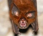 Genomic analysis reveals many animal species vulnerable to SARS-CoV-2
