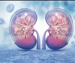 How to Detect Acute Kidney Injuries