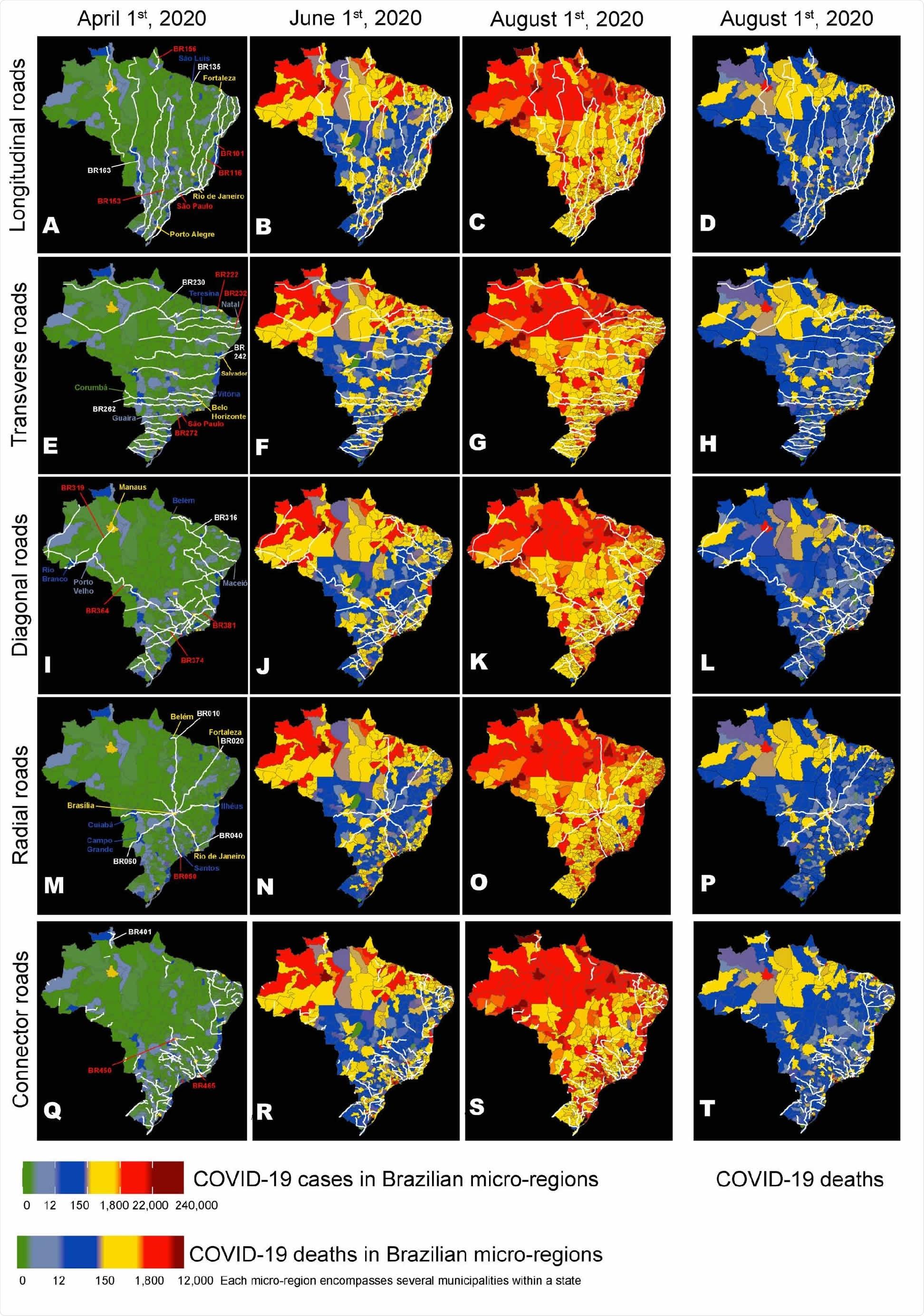 Os mapas de Brasil foram usados para representar as rotas do longitudinal principal (ANÚNCIO), transversal (e H), diagonal (IL), radial (M.P.), e estradas federais do conector (quarto), assim como a evolução da distribuição geográfica dos casos COVID-19 em três tâmaras (1º de abril, o 1º de junho, e 1º de agosto), e da distribuição COVID-19 das mortes o 1º de agosto (d). Total, um grupo de 26 estradas (veja o texto) de todas as cinco categorias da estrada contribuiu a aproximadamente 30% do caso COVID-19 que espalha durante todo Brasil. Os números de algumas destas estradas de espalhamento são destacados no vermelho. Observe quantos pontos quentes (cor vermelha) para os casos COVID-19 ocorra nas micro-regiões que contêm as cidades que são ficadas situadas ao longo das rotas da estrada principal como BRs 101, 116, 222, 232, 236, 272, 364, 374, 381, 010, 050, 060, 450, e 465. Embora as distribuições para os casos COVID-19 e as mortes sejam correlacionadas, as discrepâncias geográficas entre as duas distribuições podem claramente ser consideradas comparando as o 1º de agosto (C e D). Um código de cor (veja a figura parte inferior) classifica micro-regiões brasileiras (cada inclusão de diversos reboques) de acordo com seu número dos casos COVID-19 e das mortes.