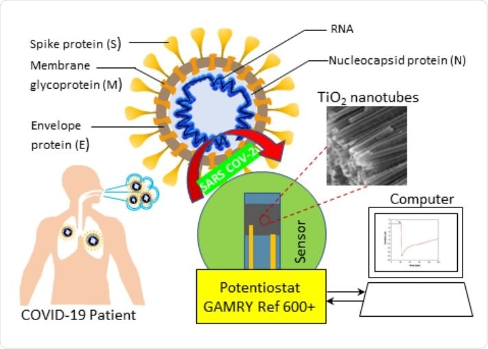 Schematic of Co functionalized TNT based sensing platform for the detection of SARS-CoV-2.
